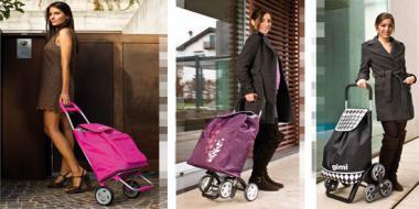 Jaki wózek na zakupy wybrać?
